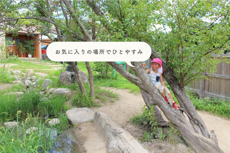 木登りする子ども