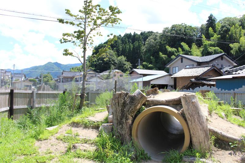 トンネル山